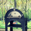 Clementi Pulcinella Pizza Oven Review